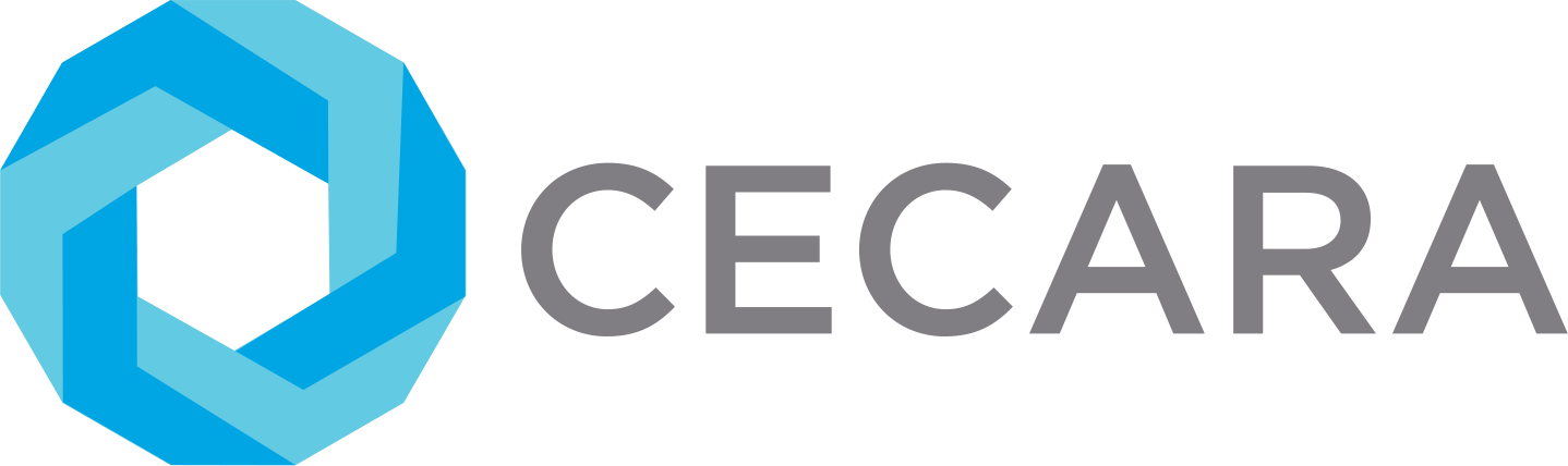 Cecara is a boutique leadership consultancy. Through partnership with influential leaders, we deliver game-changing performance and co-create profound sustainable transformation – today, and for generations to come.