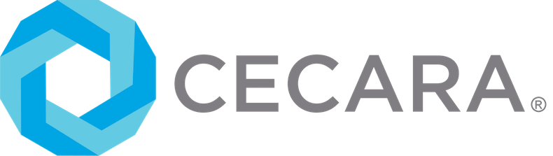 Cecara is a boutique leadership consultancy. Our calling is to empower generative evolutionary purpose and leadership in order to nourish future generations.